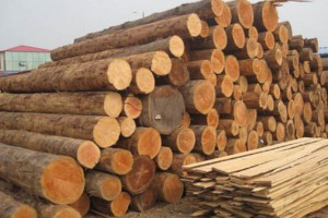 江西乐安对辖区木材厂开展消防安全检查