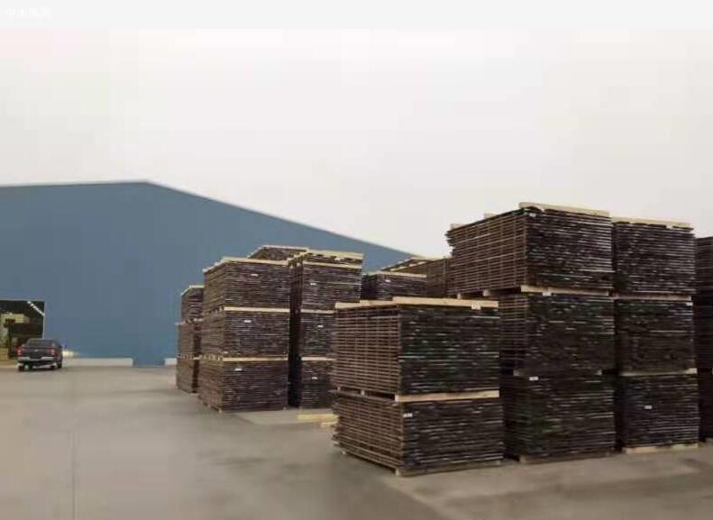 美国黑胡桃木价格是多少供应