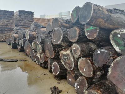 美国黑胡桃木进口价格多少钱一方?
