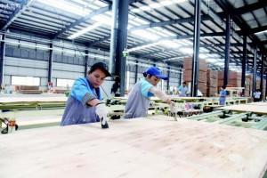威远木业上半年营收3亿元