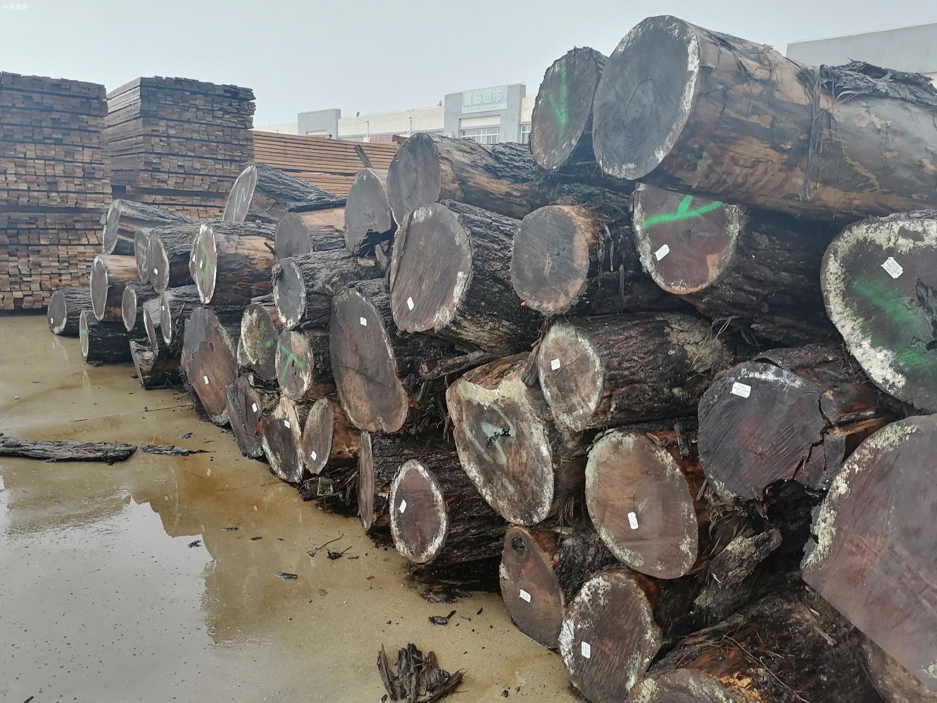 国家财政激励助力木业经济发展