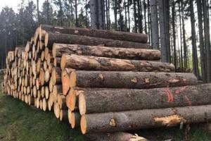 目前国内整体云杉原木库存不足90万方