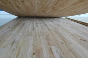 广西来宾木材产业已经初具规模