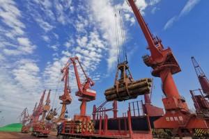 蓬莱港木材吞吐量逆势突破今年争取100万方大关