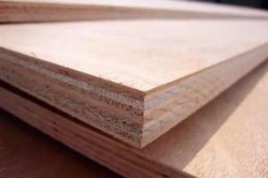 预计下半年欧洲胶合板贸易热度将下降