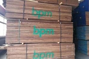 崇左宁明县多个木业项目集中开工