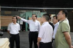 兰山区委书记调研义堂镇木业产业发展情况