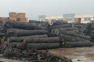 """沭阳桑墟""""四个一批"""" 促木材产业转型升级"""