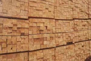 俄罗斯规模最大的五家木材企业