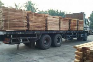 广东橡胶木市场连续三周保持顺畅走货
