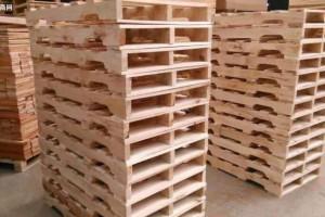 多国木材与木制品行业代表挖掘中国林木商机