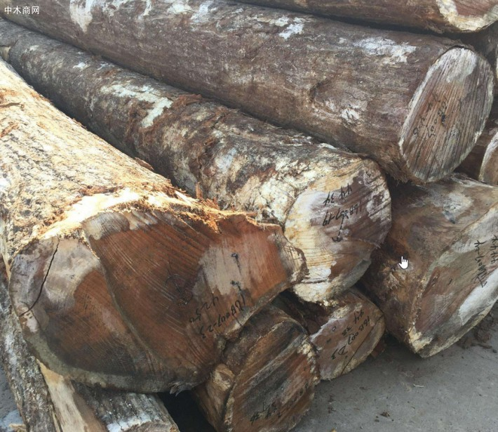 爱尔兰木材价格行情