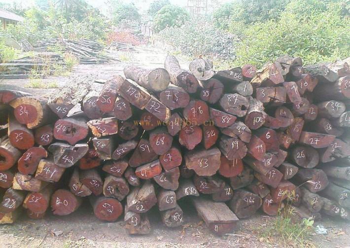 印度对木材的需求将进一步提升