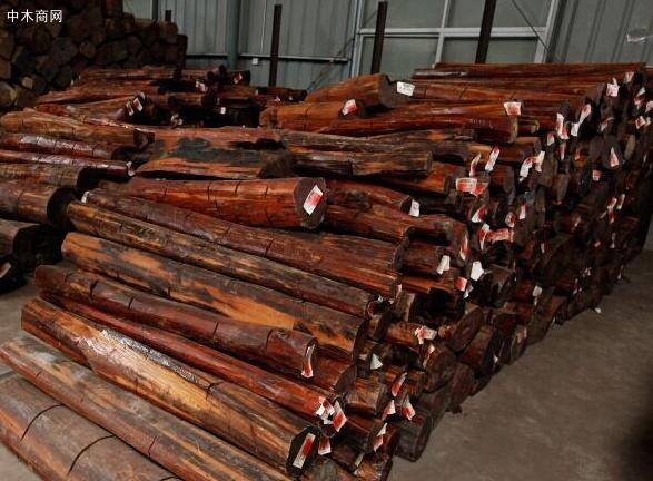 苏里南木材价格行情