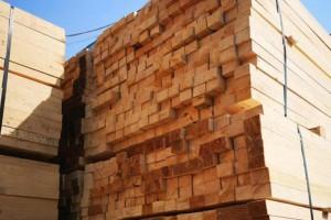太仓浮桥镇推进木材行业整治拆除违建12.3万平方米