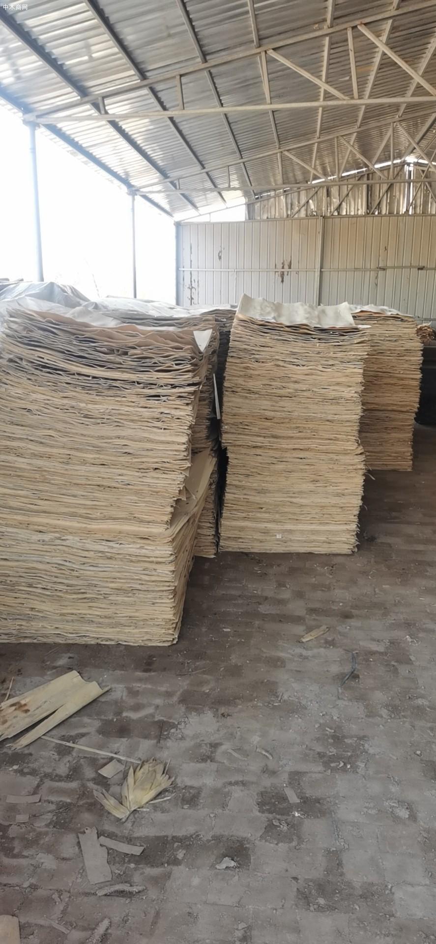 杨木木皮是什么