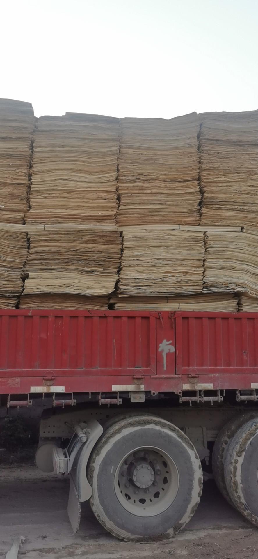 杨木木皮是什么供应