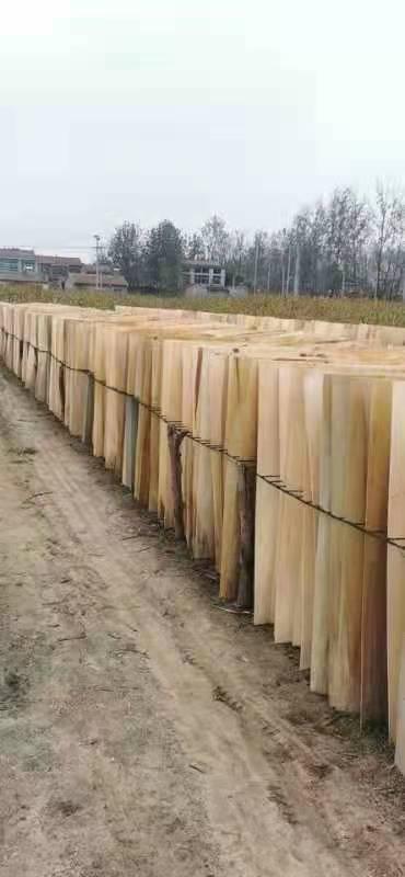 鸿坤杨木皮的用途介绍及杨木木皮多少钱一张批发