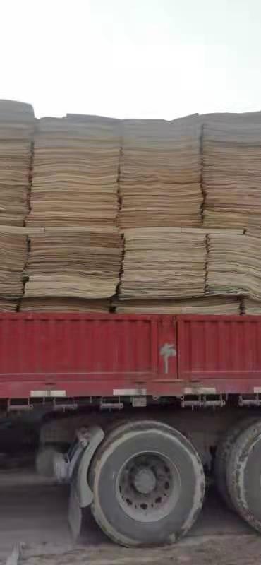 鸿坤杨木皮的用途介绍及杨木木皮多少钱一张供应