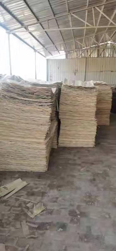鸿坤杨木皮的用途介绍及杨木木皮多少钱一张厂家