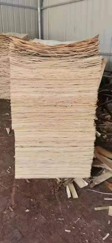 鸿坤杨木皮的用途介绍及杨木木皮多少钱一张品牌