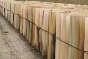 杨木木皮多少钱一张?