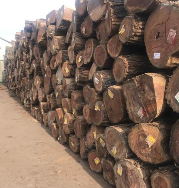 南美木材货紧与产地雨季延长有关