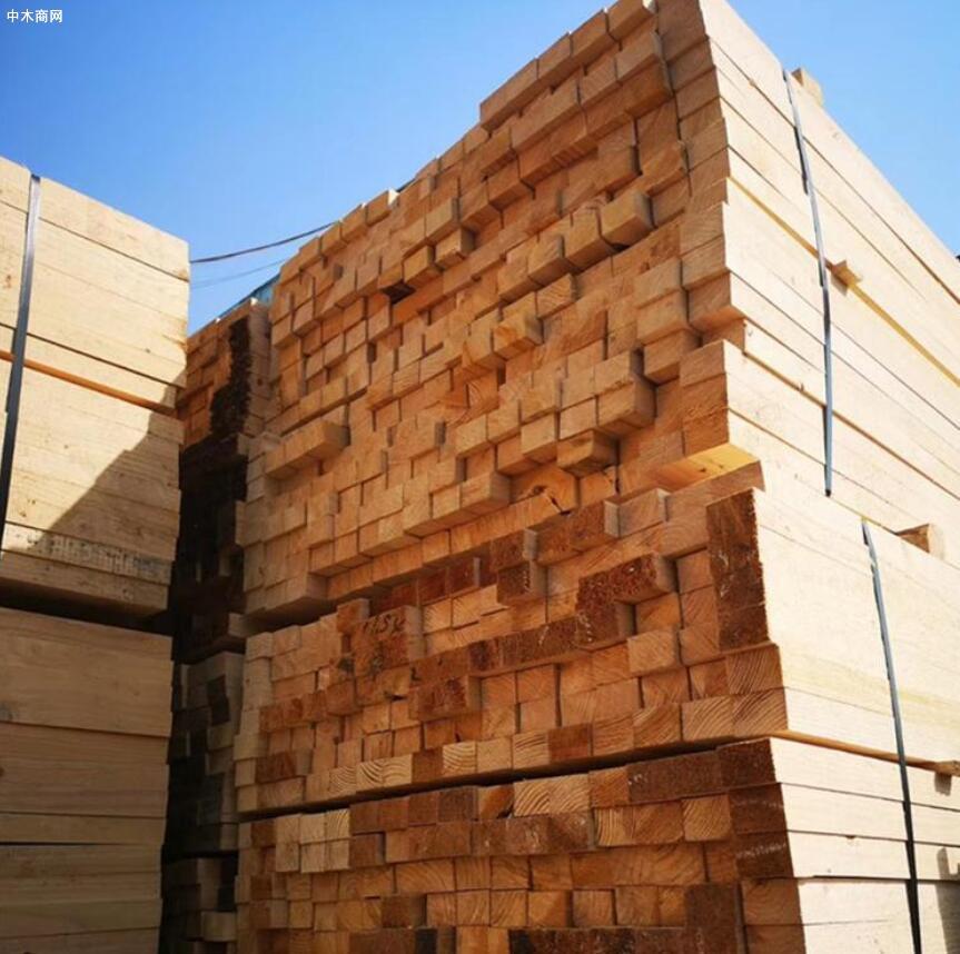 太仓针叶建筑木方价格行情