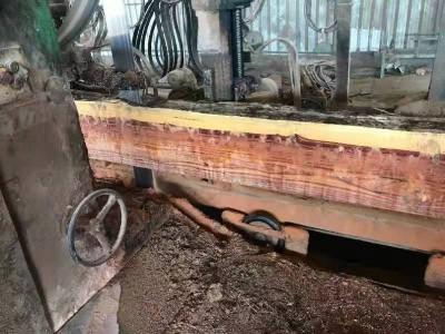 铁木豆板材价格