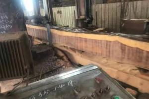 红铁木豆木材图片