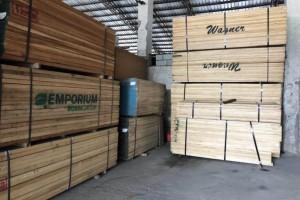 硬枫木价格上涨约1000元/立方米