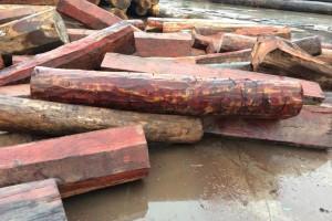 常见名贵木材学名俗称是什么?