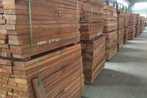 阿富汗临时政府将伐木和木材贸易定为非法