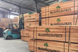 漳州全力推动木业产业高质量发展